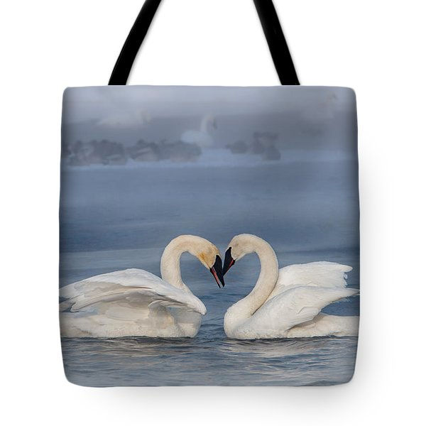 Swan Valentine - Blue Tote Bag by Patti Deters