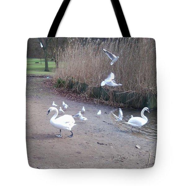 Swans 4 Tote Bag