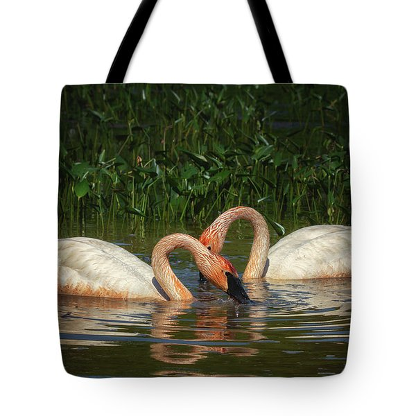 Swans In A Pond  Tote Bag