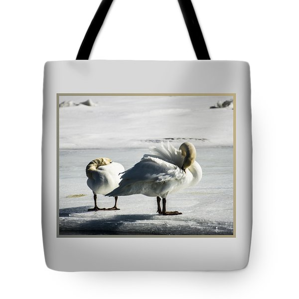 Swans On Ice Tote Bag
