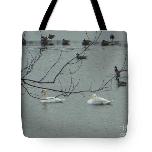 Swans With Geese Tote Bag