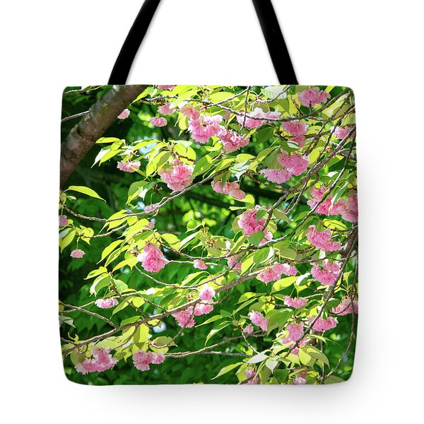 Sweeping Cherry Blossom Branches Tote Bag