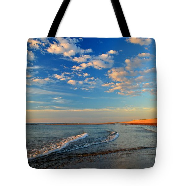 Sweeping Ocean View Tote Bag by Dianne Cowen