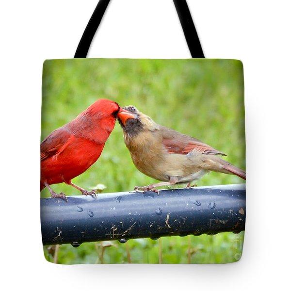 Sweet Cardinal Couple Tote Bag