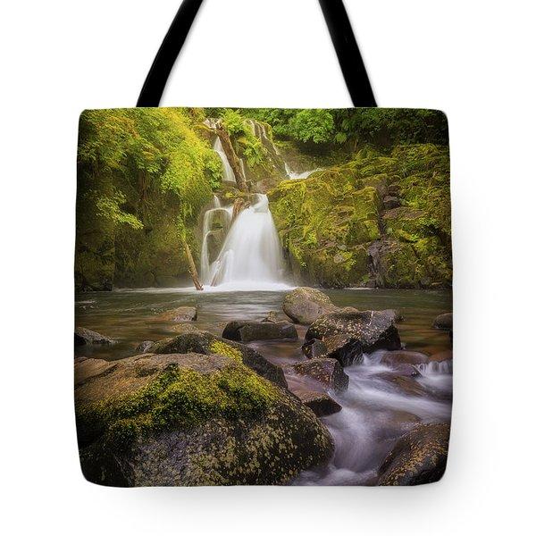 Sweet Creek Falls Tote Bag