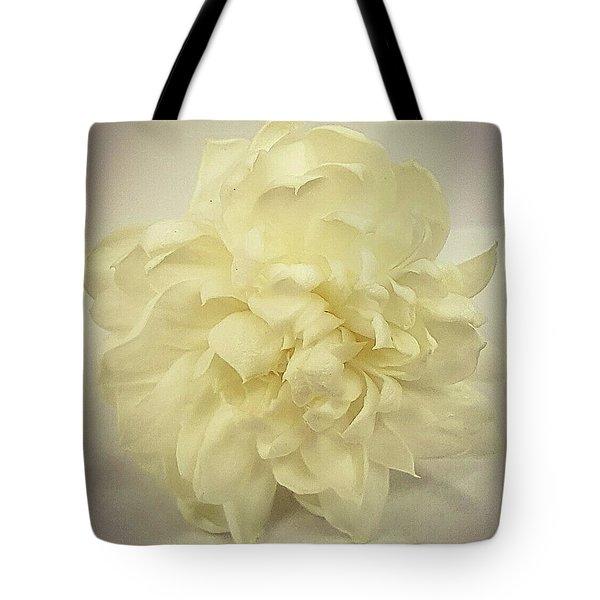 Sweet Dreams Tote Bag by Bruce Carpenter