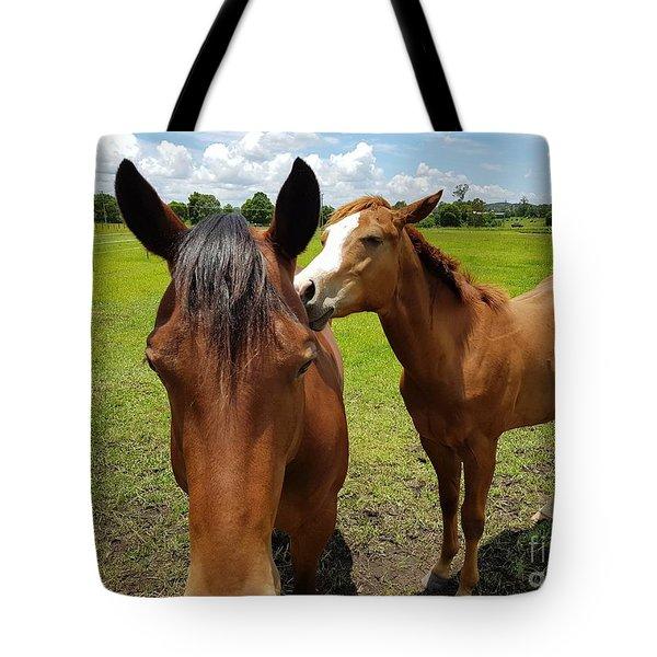 Sweet Horses  Tote Bag