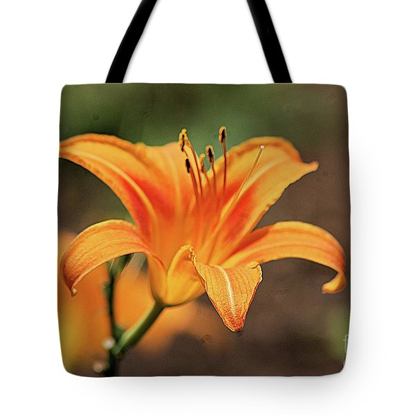 Sweet Lilly In Orange Tote Bag