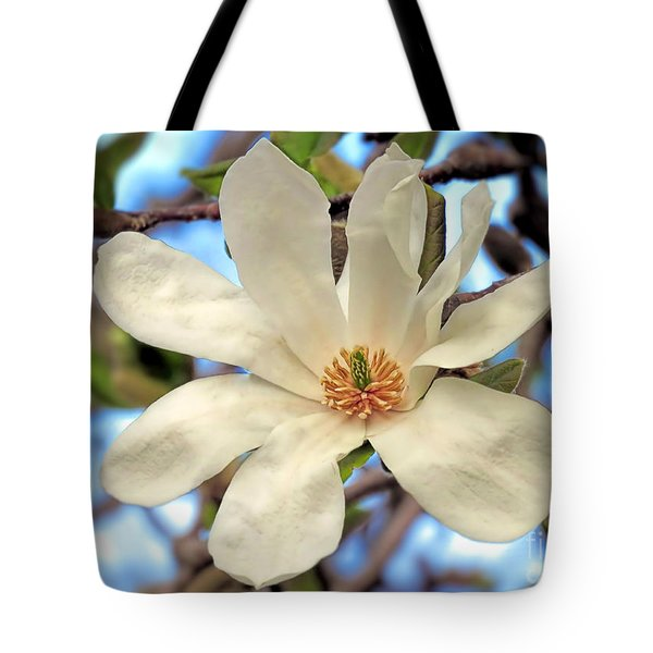 Sweet Magnolia Tote Bag by Janice Drew