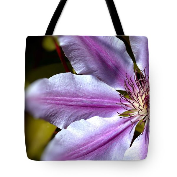 Tote Bag featuring the photograph Sweet Nelly Clematis by Baggieoldboy