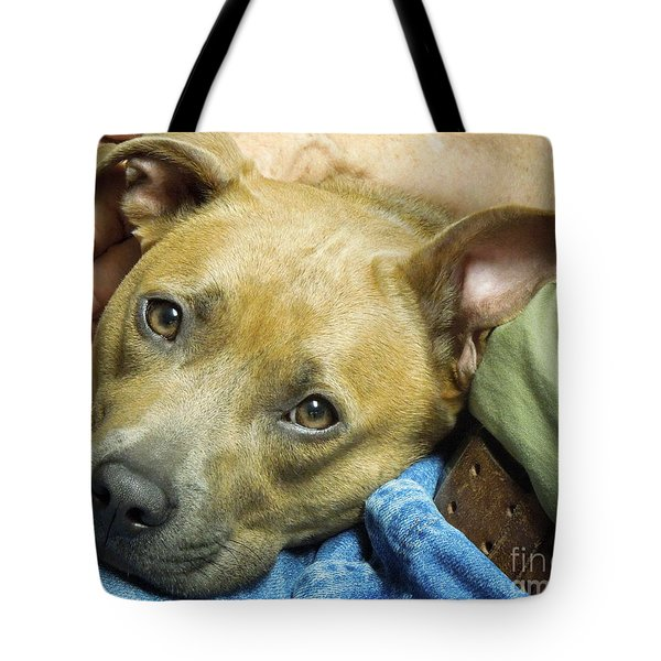 Sweet Pit Bull . Face Of Love Tote Bag by Renee Trenholm