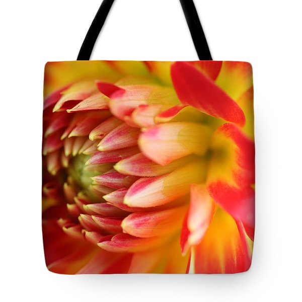 Sweet Spring Tote Bag
