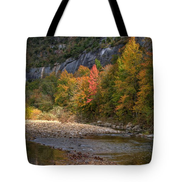 Tote Bag featuring the photograph Sweetgums At Steel Creek  by Michael Dougherty