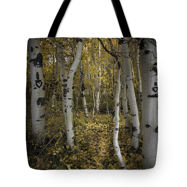 Sweetheart Trail Tote Bag