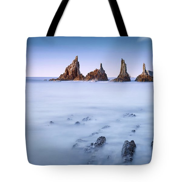 Swimming Dragons Tote Bag by Dominique Dubied