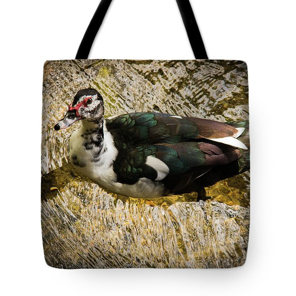 Swimming In Gold Wildlife Art By Kaylyn Franks Tote Bag