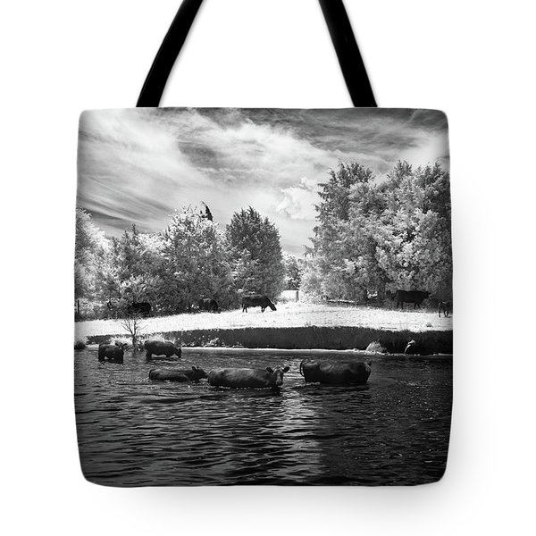 Swimming With Cows II Tote Bag