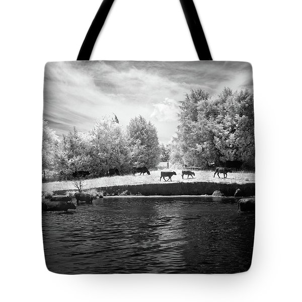 Swimming With Cows Tote Bag