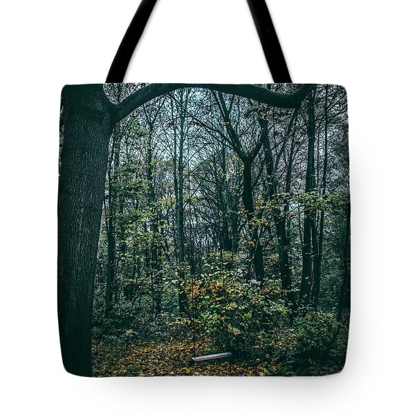 Tote Bag featuring the photograph Swing by Ana Mireles