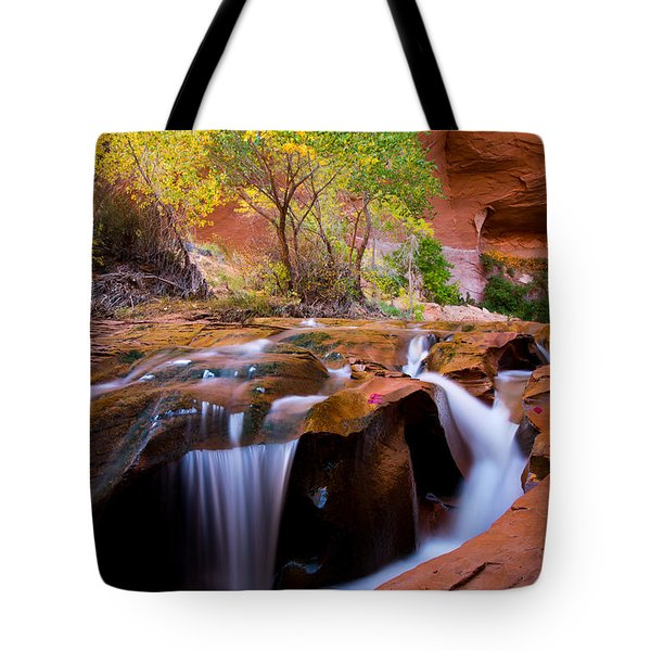 Swiss Cheese Falls Tote Bag by Dustin  LeFevre
