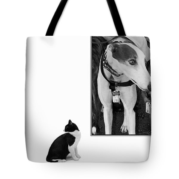 Sworn Enemies - Gently Cross Your Eyes And Focus On The Middle Image Tote Bag by Brian Wallace