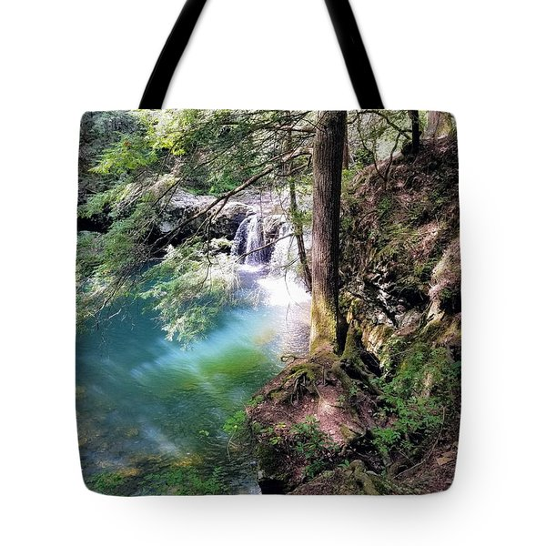 Sycamore Falls Tote Bag