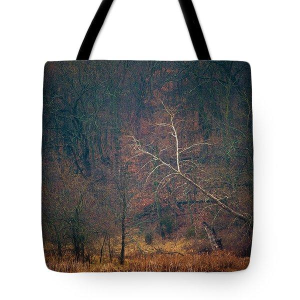 Sycamore Inclination Tote Bag