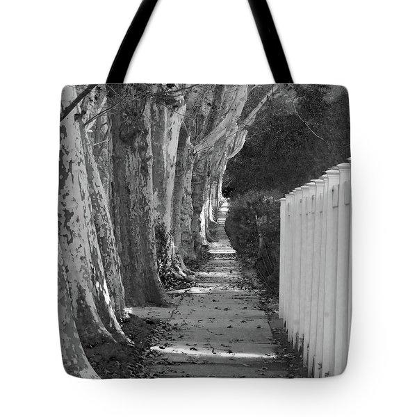 Sycamore Walk-grayscale Version Tote Bag