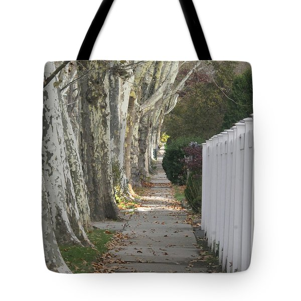 Sycamore Walk Tote Bag