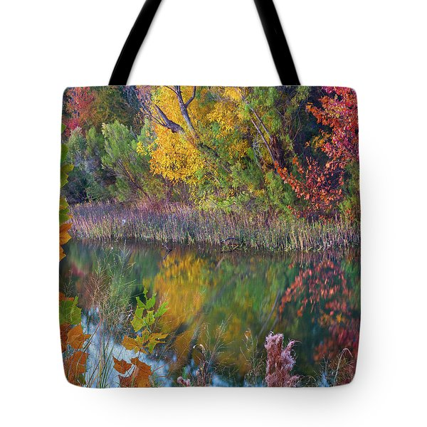 Sycamores And Willows Tote Bag