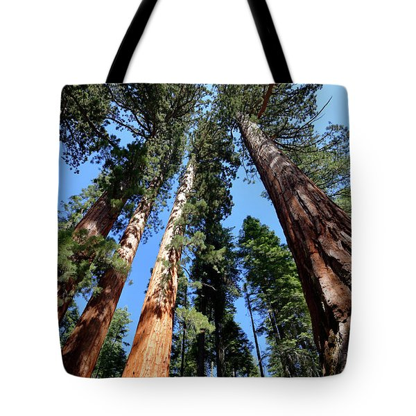 Sylvan Giants 2 Tote Bag