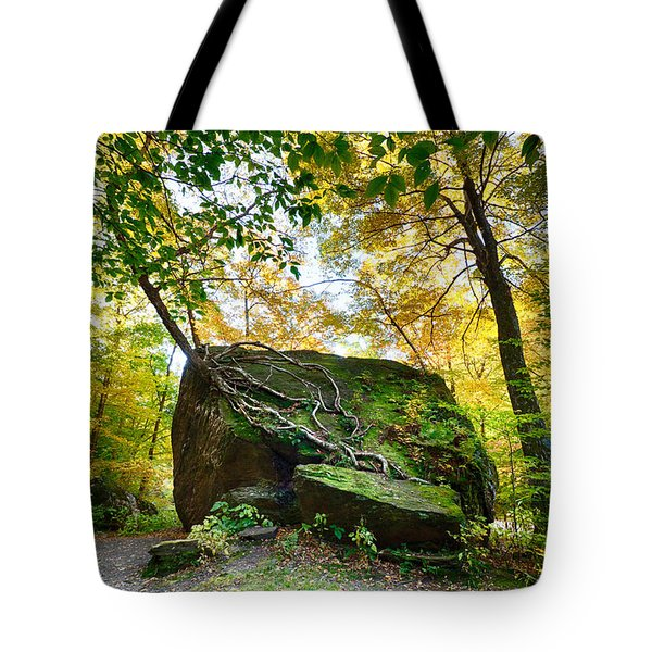 Symbiosis In Vermont Tote Bag