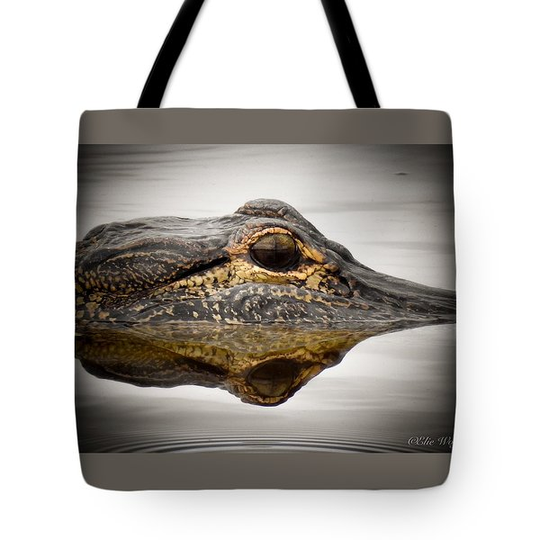 Symmetry And Reflection Tote Bag