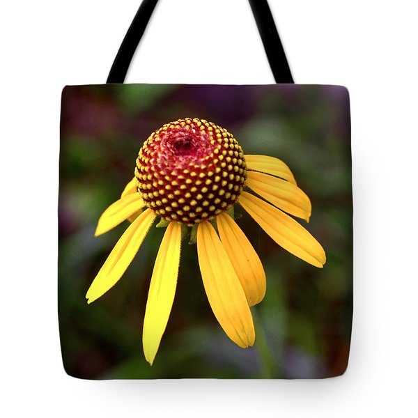 Symmetry Of Nature 015 Tote Bag by George Bostian