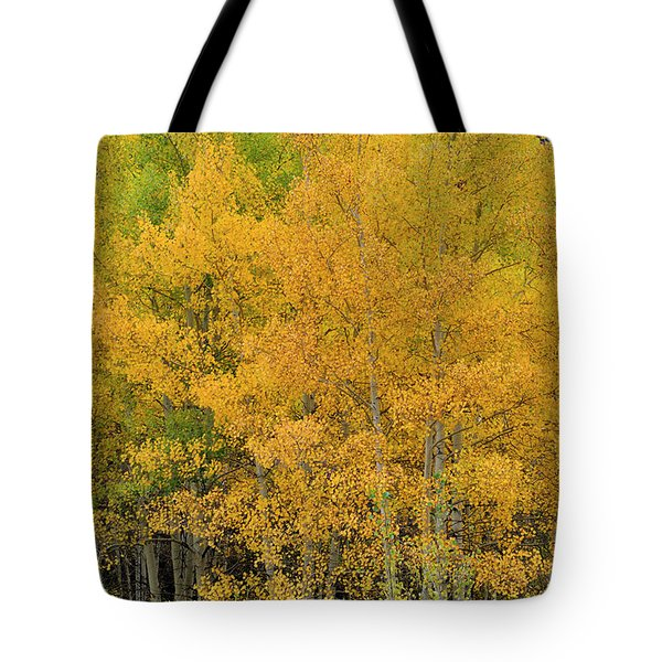 Tote Bag featuring the photograph Symphony In Gold by Ron Cline