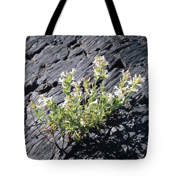 T-107709 Hot Rock Penstemon Tote Bag