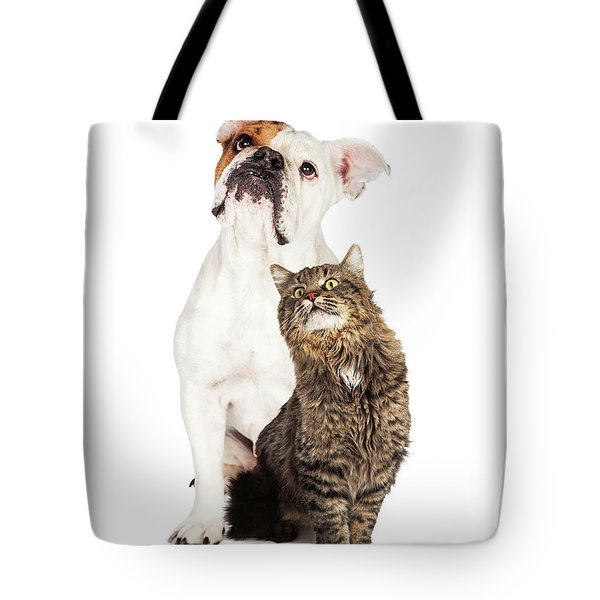 Tabby Cat And Bulldog Together Looking Up Tote Bag