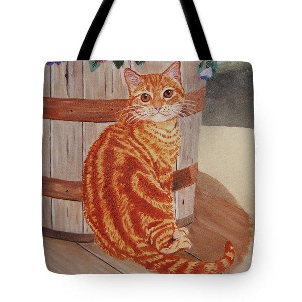 Tabby Cat Tote Bag