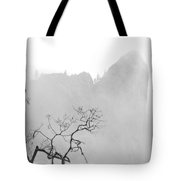 Taft Point In Mist Tote Bag by Josephine Buschman