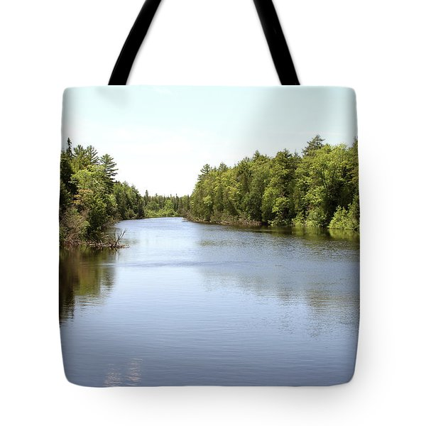 Tote Bag featuring the photograph Tahquamenon River by Jackson Pearson