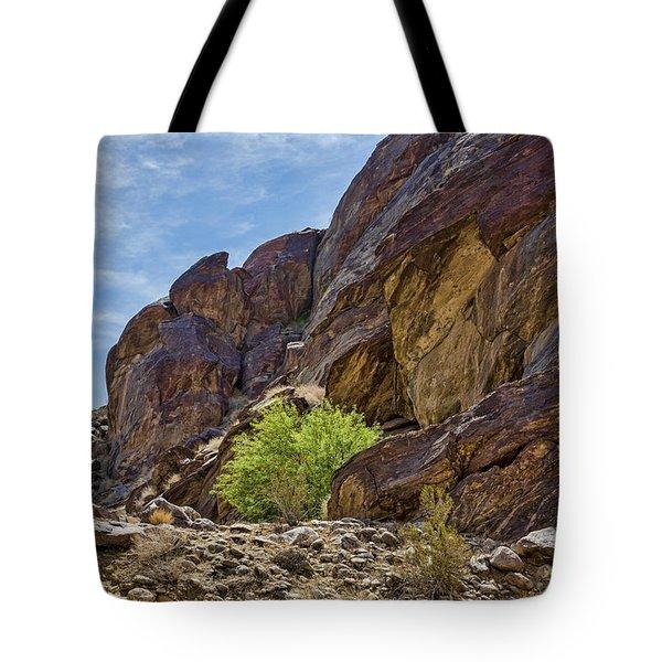 Tahquitz Canyon Rocks Tote Bag
