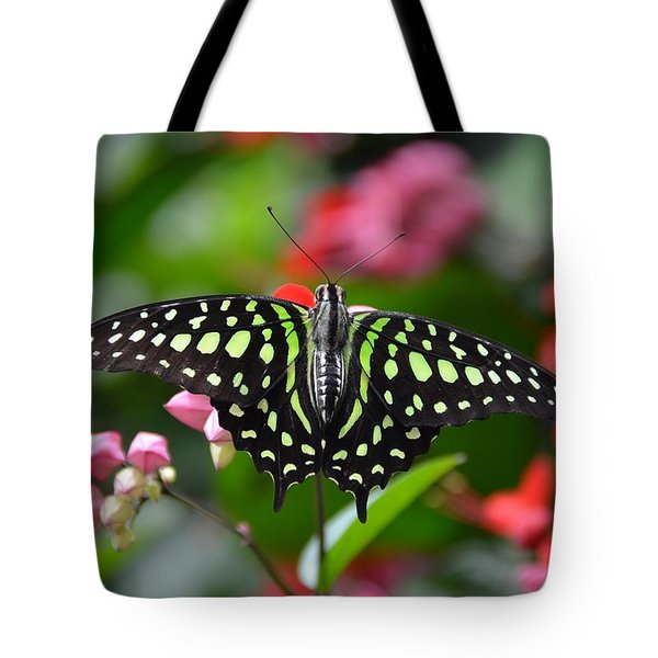 Tailed Jay4 Tote Bag