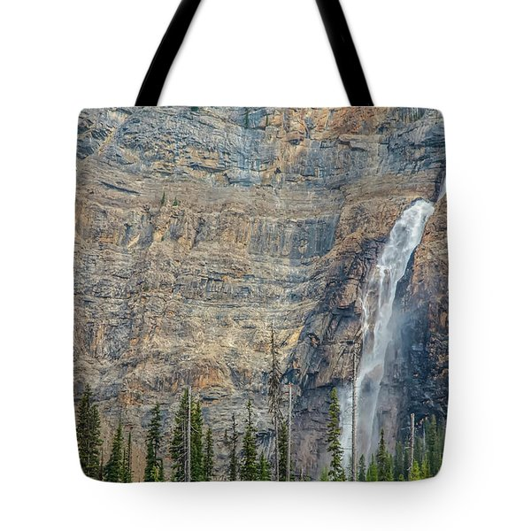Tote Bag featuring the photograph Takakkaw Falls 2009 by Jim Dollar