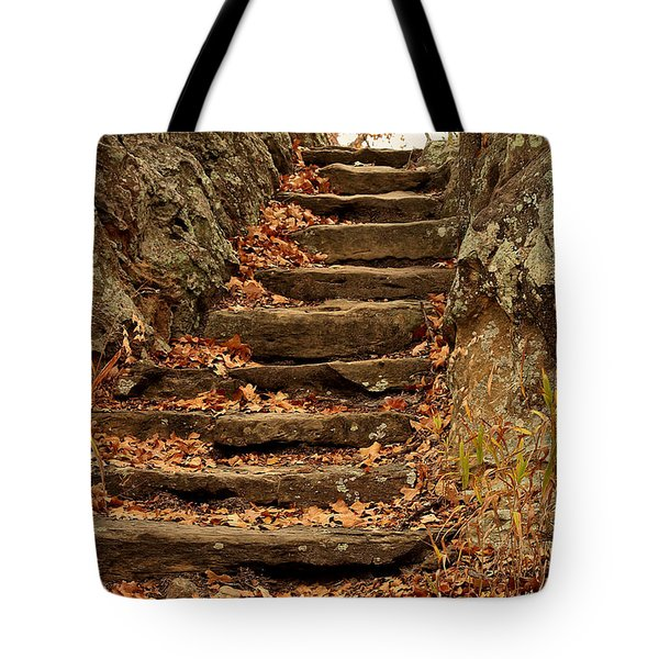 Tote Bag featuring the photograph Take Me To The Top by Sheila Brown