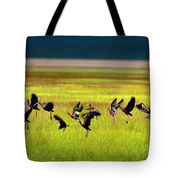 Take Off Tote Bag by Leland D Howard