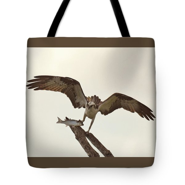 Tote Bag featuring the photograph Take Out Dinner by Sally Sperry
