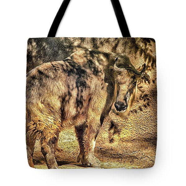 Tote Bag featuring the photograph Takin 2 by Joseph Hollingsworth