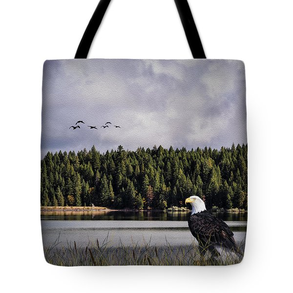Tote Bag featuring the photograph Taking A Break As Evening Falls by Diane Schuster