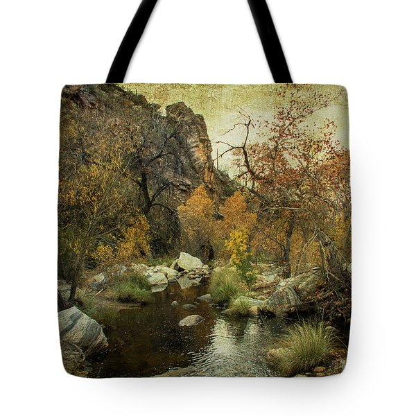 Tote Bag featuring the photograph Taking A Hike by Barbara Manis
