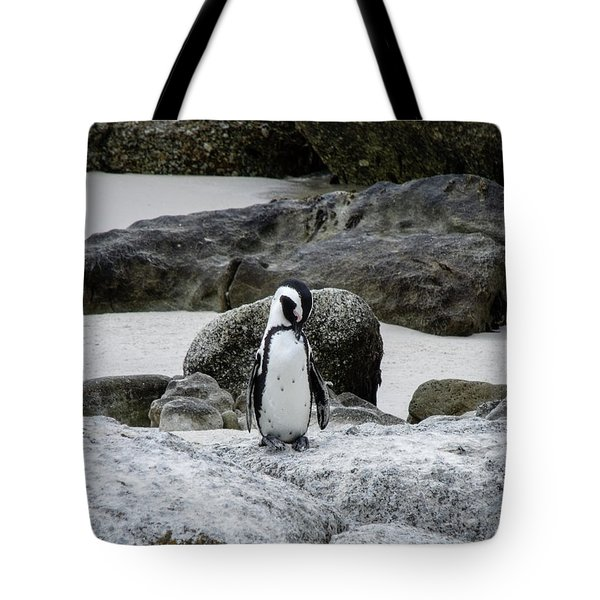 Taking A Nap Tote Bag